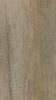 Дуб Имперский №430